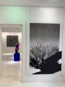 Valentin van der Meulen @Galerie geraldine Zberro